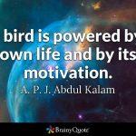 DR. A.P.J Abdul Kalam Quotes_2