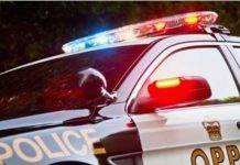 Ontario_Provincial_Police_to_issue_fines_for_gatherings_of_50_or_more_people